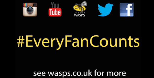wasps fan count